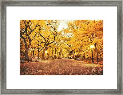 Autumn Framed Print by Vivienne Gucwa