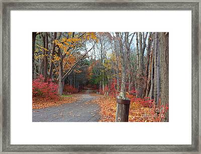 Autumn Walk At West Thompson Lake  Framed Print by Neal Eslinger