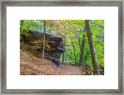 Framed Print featuring the photograph Autumn Walk In Fairmount Park -  Licoln Drive by Bill Cannon