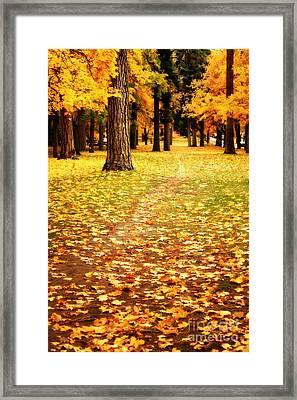Autumn Walk In Spokane Framed Print