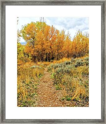 Autumn Walk Photo Framed Print