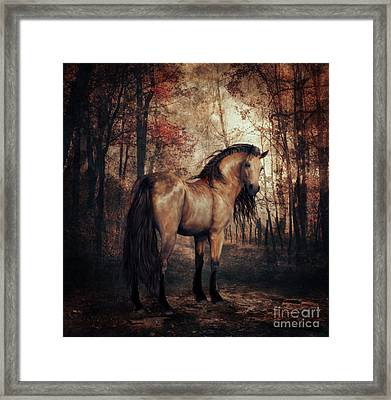 Framed Print featuring the digital art Autumn Walk by Shanina Conway