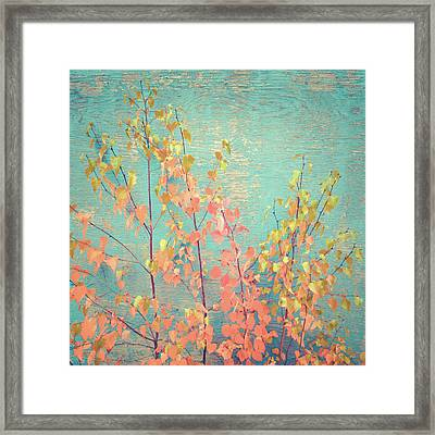 Framed Print featuring the photograph Autumn Wall by Ari Salmela
