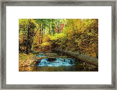 Framed Print featuring the photograph Autumn Waterfall by Anthony Citro