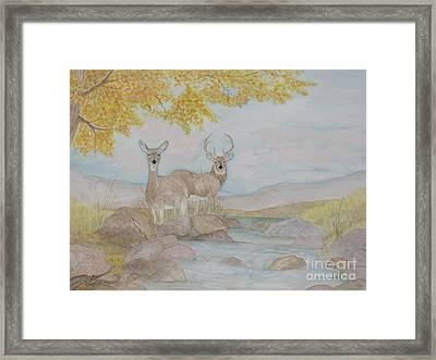 Autumn Watersong Framed Print