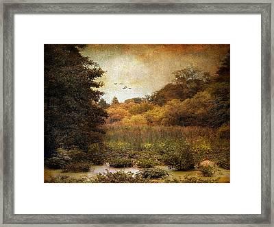 Autumn Wetlands Framed Print by Jessica Jenney