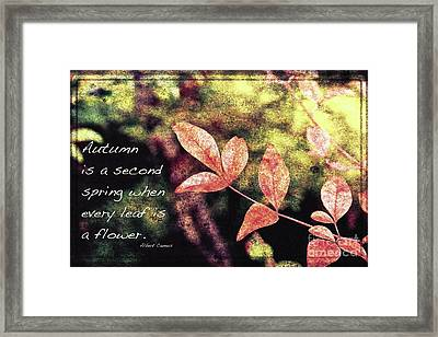 Autumn Whisper 2 Framed Print by Cindy Nearing