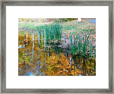 Autumn With Lake View 1 Framed Print