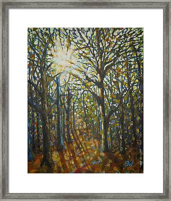 Autumn Wood Framed Print