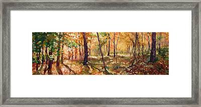 Autumn Woods Framed Print by Bonnie Mason