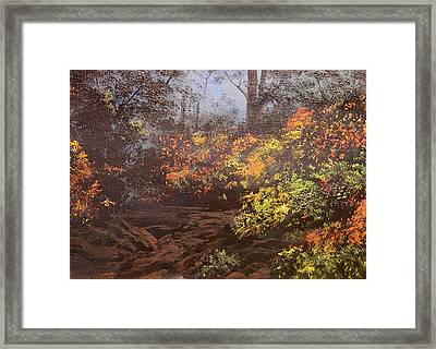 Autumn Woods Framed Print by Connie Tom