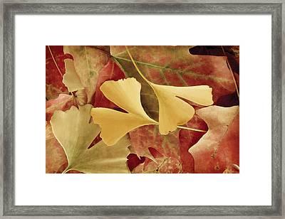 Autumn Yellow Framed Print