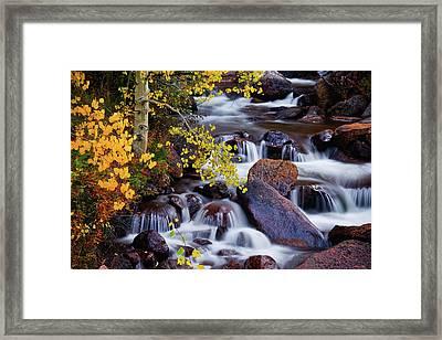 Framed Print featuring the photograph Autumn Zen by John De Bord