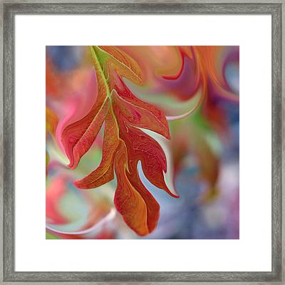 Autumnal Aria Framed Print by Suzy Freeborg