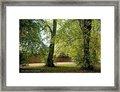 Autumnal Colours Framed Print by Niel Morley