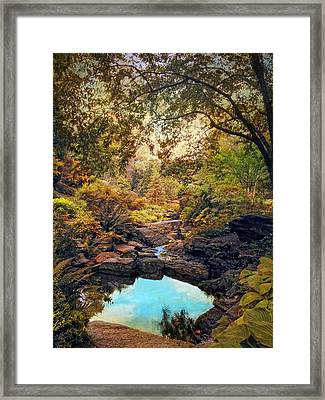 Autumnal Garden Framed Print