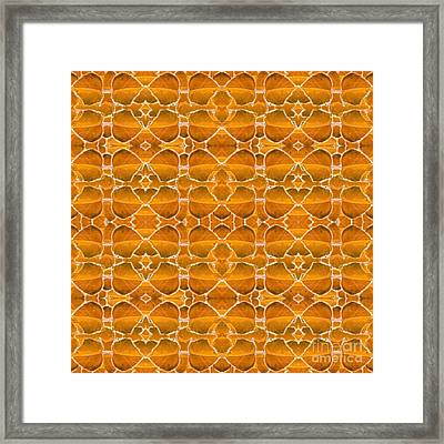 Autumnal In Orange Framed Print by Helena Tiainen