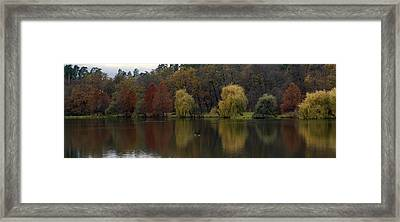 Autumnal Framed Print by Mihail Antonio Andrei