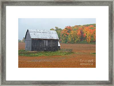 Framed Print featuring the photograph Autumnal.. by Nina Stavlund