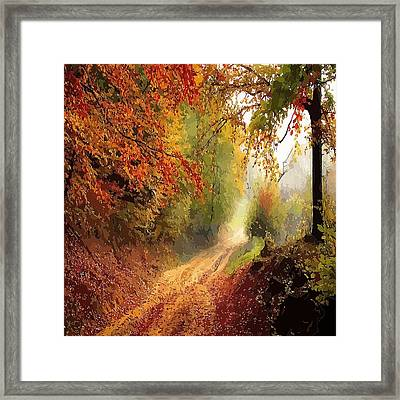 Autumnal Pathway Framed Print