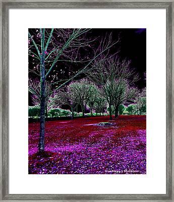Autumnal Reversography Framed Print