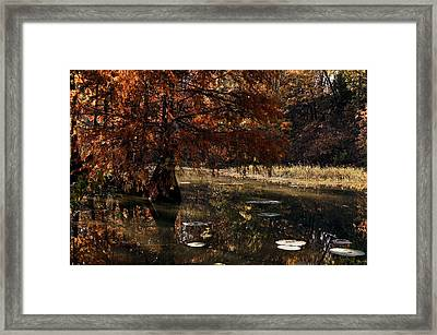 Framed Print featuring the photograph Autumnal Solace At Lake Murray by Tamyra Ayles