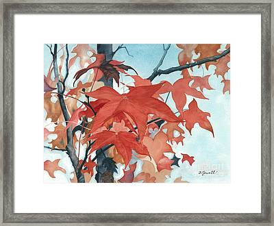 Autumn's Artistry Framed Print by Barbara Jewell