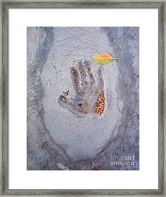 Autumns Child Or Hand In Concrete Framed Print