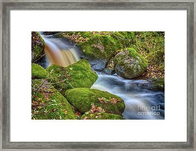 Autumn's Creek 2 Framed Print