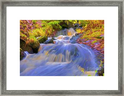 Autumn's Creek 3 Framed Print