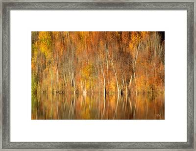 Framed Print featuring the photograph Autumns Final Palette by Everet Regal