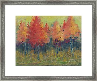 Autumn's Glow Framed Print