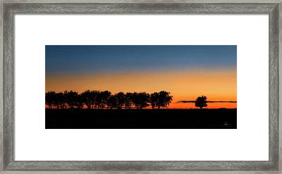 Autumn's Golden Glow Framed Print