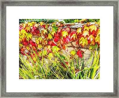 Autumn's Kiss Framed Print