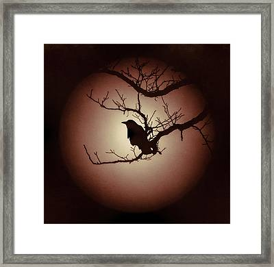 Autumn's Light Black Crow Silhouette Framed Print by Terry DeLuco