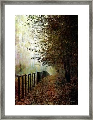 Autumns Path 7864 Idp_2 Framed Print