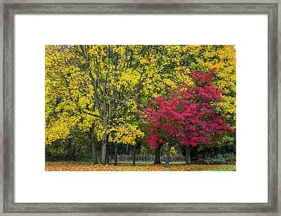 Autumn's Peak Framed Print