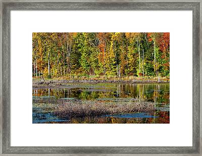 Framed Print featuring the photograph Autumns Quiet Moment by Karol Livote