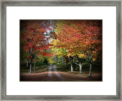 Autumn's Walk Framed Print by Trina Prenzi