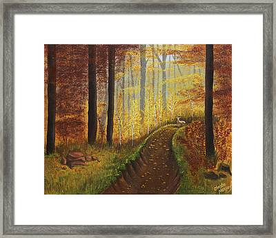 Autumn's Wooded Riverbed Framed Print by Christie Nicklay