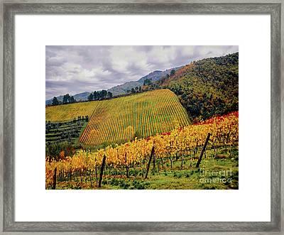 Autunno Italiano Framed Print