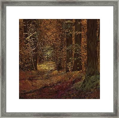 Autunno Nei Boschi Framed Print