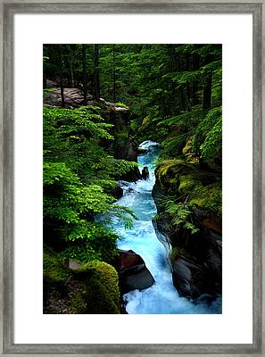 Avalanche Creek Waterfalls Framed Print