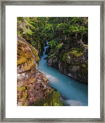 Framed Print featuring the photograph Avalanche Gorge 5 by Gary Lengyel