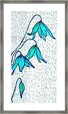 Avalanche Lilys In Blue Framed Print by Brenda Adams