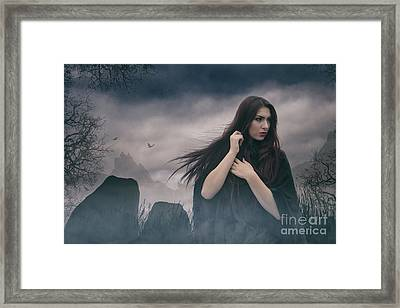 Avalon Framed Print