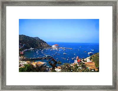 Avalon Harbor At Catalina Framed Print by Catherine Natalia  Roche