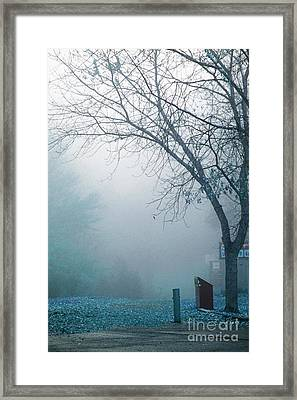Avant Les Flocons 01 - C5f Framed Print by Variance Collections