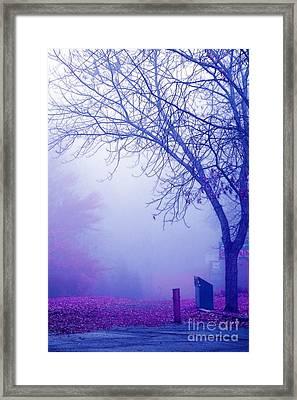 Avant Les Flocons - 02a33c Framed Print