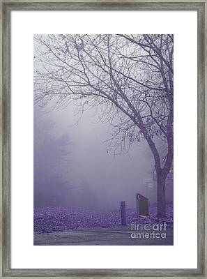 Avant Les Flocons - 1c2a Framed Print